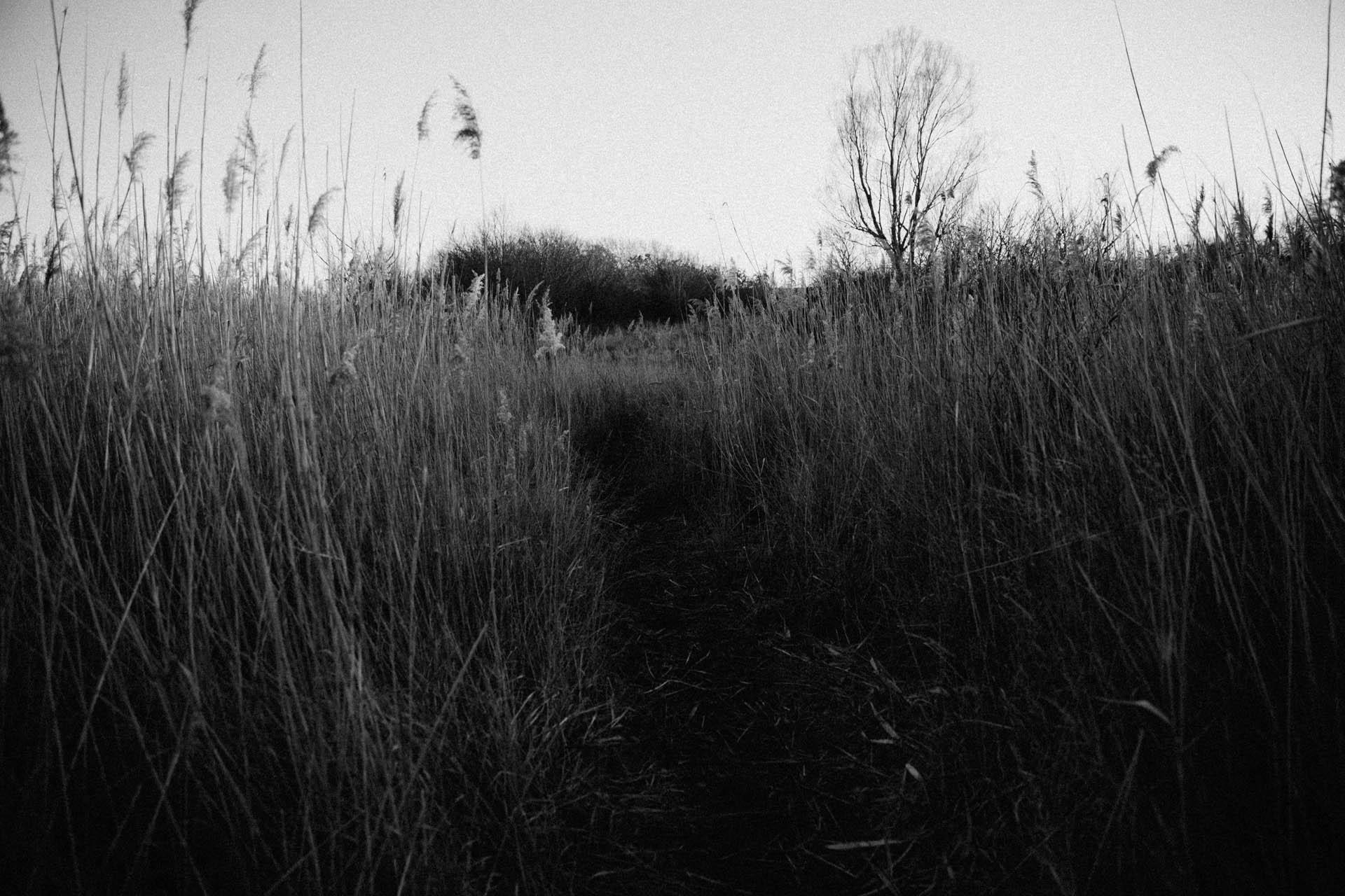 juliadominik_elopment-vienna-photographer_agnesundandi-25